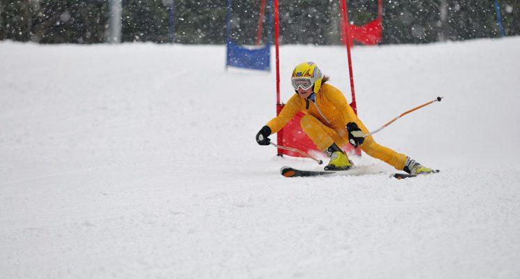 Ski skitravel